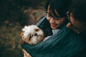 Learn how pets are good for your relationship.